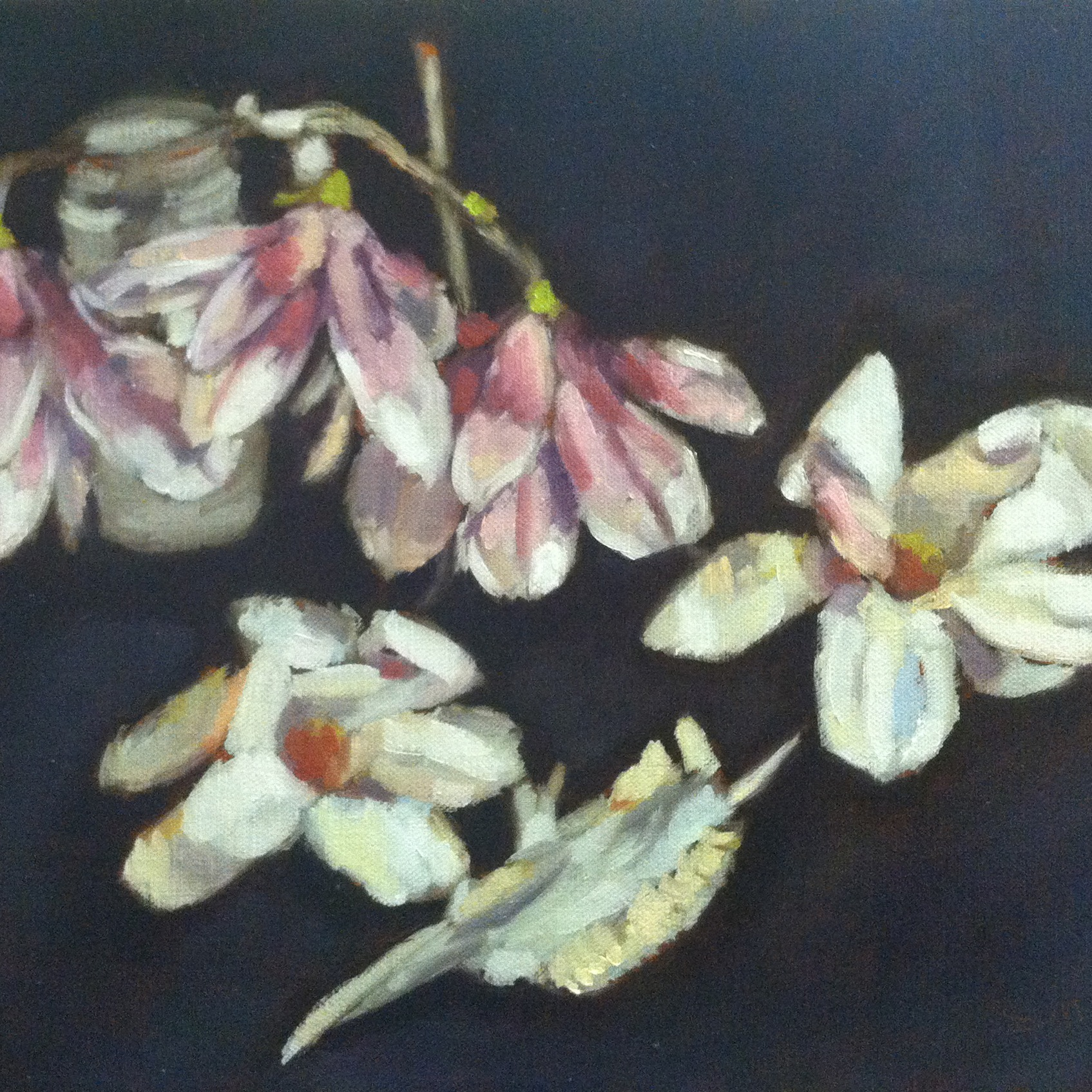 Magnolias and Jaw Bone